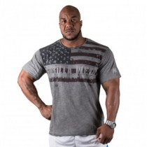 USA Flag Tee Grey